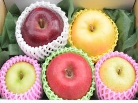 色々りんご