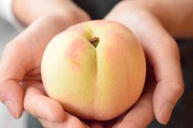 桃のサムネイル画像