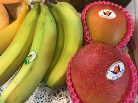 バナナ、マンゴー