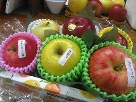 りんご食べ比べ.jpg