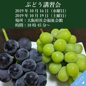 2019年ぶどう講習会
