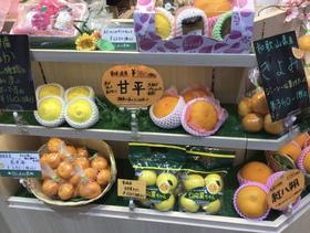 果物棚(柑橘).jpeg
