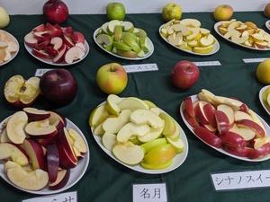 りんご食べ比べのサムネイル画像
